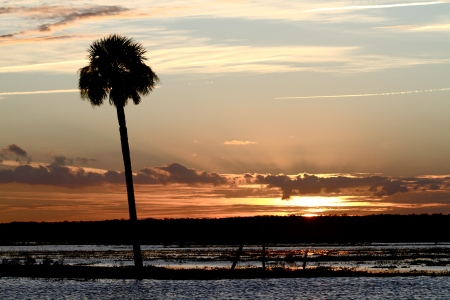 Sunset at the Marshlands of St Johns River in Christmas, FL